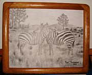 Signed Prints Drawings - Zebra Love by Ron Thompson