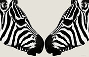 Love The Animal Posters - Zebra Love Poster by Yvon -aka- Yanieck  Mariani