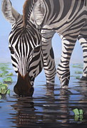 Tanzania Paintings - Zebra-morning by Neil Walker