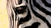 Stripe.paint Posters - Zebra Poster by OpposableThumbnails EyeBrowses