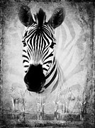 Merged Photo Prints - Zebra Profile In Bw Print by Ronel Broderick
