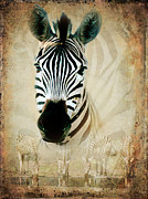 Merged Photo Prints - Zebra Profile Print by Ronel Broderick