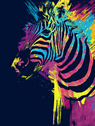 Bright Colors Posters - Zebra Splatters Poster by Olga Shvartsur