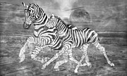 Full Moon Mixed Media - Zebras I of II by Betsy A Cutler East Coast Barrier Islands