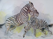 Animals Framed Prints Paintings - Zebras by Janina  Suuronen