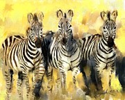 Zebra Paintings - Zebras by Robert Smith
