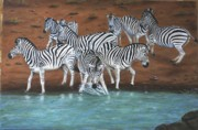 Wildlife Paintings - Zebras by Sid Ball