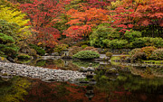 Japanese Garden Photos - Zen Foliage Colors by Mike Reid
