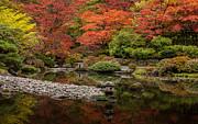 Zen Foliage Colors Print by Mike Reid