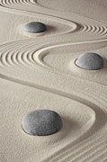 Treatment Posters - Zen Garden Poster by Dirk Ercken