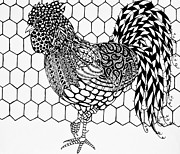 Freimann Drawings Prints - Zentangle Rooster Print by Jani Freimann