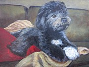 Havanese Paintings - Zico the Havanese by Vivian Haberfeld