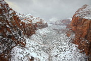 Snow Photos - Zion Canyon Deep in Snow by Jetson Nguyen