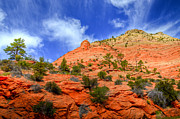 Utah Sky Photos - Zion National Park by Kelly Wade