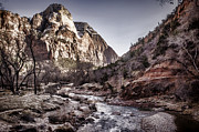 Natural River Posters - Zion NP Poster by Heather Applegate