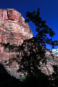Bill Caldwell Posters - Zion Silhouette 2 Poster by ABeautifulSky  Photography