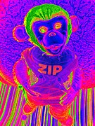 Zippy The Monkey Print by Ed Weidman