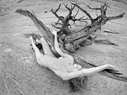 Nude Photos - Nude Woman in Desert Wash with Driftwood Black White Infrared Photo by Chris Maher