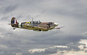 Warbird Posters -  317 Sqdn Spitfire Poster by Pat Speirs
