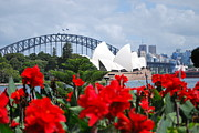 Opera House Photos -  A View on the Opera House by Dorota Nowak