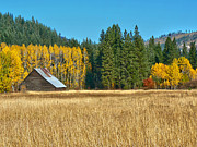 Jon Mack -  Barn and Cascade Autumn