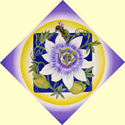 Passionflower Painting Prints -  Bee and Passionflower Print by Marcia  Perry