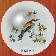 Unique Bird Posters -  Bee Eater Poster by Madeline  Allen - SmudgeArt
