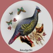 Aves Digital Art -  Blood Pheasant by Madeline  Allen - SmudgeArt