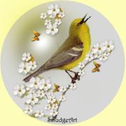Aves Digital Art -  Blue Winged Warbler by Madeline  Allen - SmudgeArt