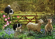 Sheep Farm Prints -  Collecting The Strays Print by Trudi Simmonds