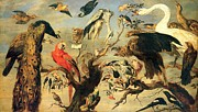 1630 Prints -  Concert of Birds Print by Pg Reproductions