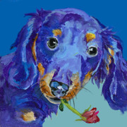 Acrylic Dog Paintings -   Dach by Pat Saunders-White            