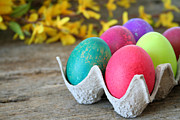 Dozen Photos -  Easter Eggs by Darren Fisher