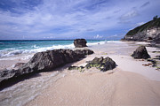 Elbow Prints -  Elbow Beach Bermuda Print by George Oze