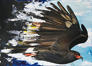 Orange Mixed Media Originals -  Everglades Snail Kite by Anthony Burks