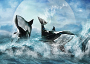 Orca Digital Art Acrylic Prints -  Forever Acrylic Print by Trudi Simmonds