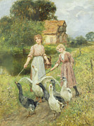 Pond And Trees Painting Acrylic Prints -  Girls Herding Geese  Acrylic Print by Henry John Yeend King