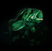 Green Fish Print by Veronica Ventress