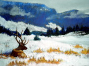 Snow Scene Pastels Framed Prints -  High Country Elk Framed Print by Curt Peifley