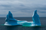 Icebergs Art -  Iceberg in Newfoundland by David Nunuk