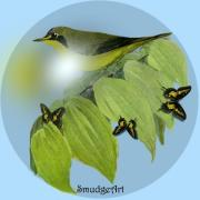 Kentucky Digital Art -  Kentucky Warbler by Madeline  Allen - SmudgeArt