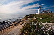 Pemaquid Lighthouse Posters -  Lighthouse with Wildflowers Poster by George Oze