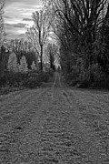 Gravel Road Prints -  Long Lonely Road Print by David Chance