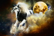 Foal Framed Prints -  Moon Dancer Framed Print by Trudi Simmonds