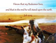 Redeemer Framed Prints -  My Redeemer Lives Framed Print by Elizabeth Mix