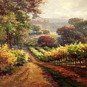 Napa Valley Vineyard Paintings -  Napa Vineyard Way by Lombardi