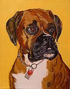 Boxer Painting Prints -  Norman  Print by Brenda Morgado