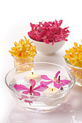 Lighting Originals -  Orchid Head And Candle  by Atiketta Sangasaeng