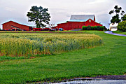 Pa Barns Prints -  Pennsylvania Farm Print by Louise Peardon