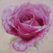Eve Corin -  Pink Rose